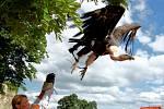 Den magistra Edwarda Kelleyho na hradě Hněvín v Mostě, 2010
