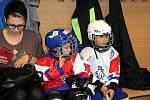 Akce Týden hokeje na ledě A - Benet areny v Mostě