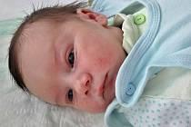 Jan Gröbl se narodil 19. října 2017 ve 4.20 hodin v mostecké porodnici mamince Lucii Gröblové z Loun. Měřil 50 cm a vážil 3,92 kilogramu.