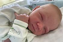 Pavel Denemark se narodil mamince Daniele Denemarkové z Mariánských Radčic 13. srpna v 1.25 hodin. Měřil 50 cm a vážil 3,3 kg.