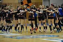 Takhle se v minulé sezoně doma Černí andělé radovali z výhry nad Michalovcemi.