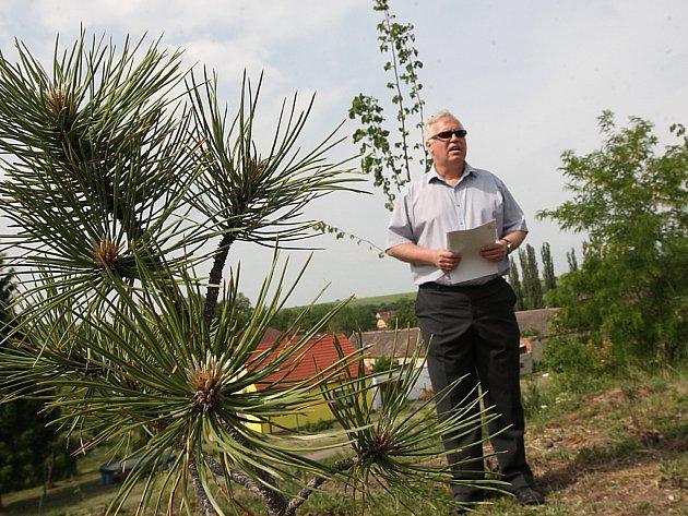 Obyvatele Polerad budou chránit stromy před prachem a hlukem.