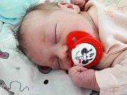 Eliška Ilavská se narodila mamince Lence Longauerové z Mostu 29. listopadu 2018 v 7.33 hodin. Měřila 52 cm a vážila 3,1 kilogramu.