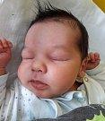 Tobiáš Dani se narodil mamince Janě Vernerové z Loun 13. února 2018 v 9.17 hodin. Měřil 54 cm a vážil 4,7 kilogramu.
