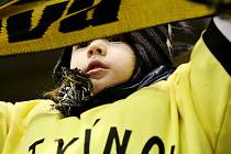 Fanoušci zaplatí za zápasy play out v Litvínově za stání čtyřicet korun, za sezení šedesát.