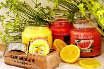 Tyto a další druhy svíček se budou vyrábět mezi Havraní na Mostecku a Velemyšlevsí na Žatecku.