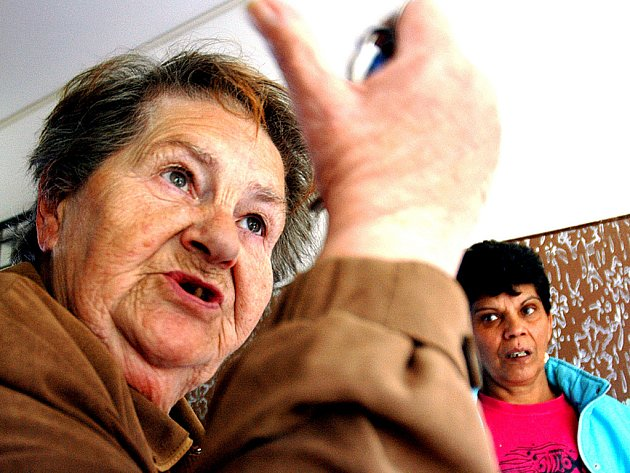 Valérie Hanáková z Janova tvrdí, že všichni Romové na sídlišti nejsou špatní.