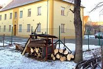 Ořezaný strom v Mostě.