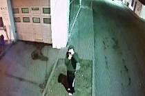 Hledaný lupič u myčky aut na benzince u Kauflandu v Mostě.