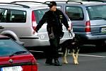 Policejní psovod prohledává okolí finančního úřadu.