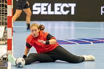 Černí andělé ve druhém domácím zápase Ligy mistrů se švédským Sävehofem.