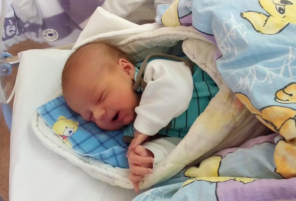 Jan Theodor se narodil Martině Schmidové a Lukáši Theodorovi 26. března v 11.01 hodin. Měřil 55 cm a vážil 4,23 kg.