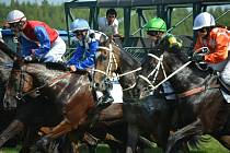V sobotu 31. srpna bude na mosteckém hipodromu dostihový den. Milovníci závodních koní se mohou těšit třeba na Velkou cenu Ústeckého kraje a sprinterský dostih o titul nejrychlejšího koně v České republice.