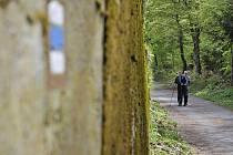 K nejoblíbenějším procházkovým trasám v lesních samotách na Litvínovsku patří naučná stezka zvaná Tesařovka.