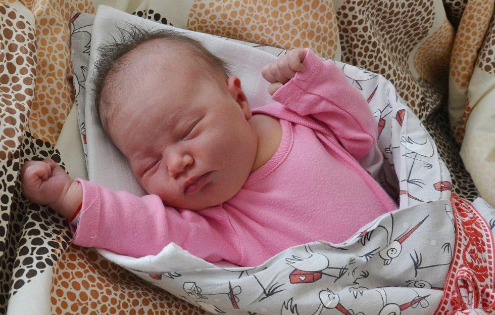Ella Šoulová se narodila 22. února 2021 ve 22.19 hodin Lucii a Lukáši Šoulovým. Měřila 50 cm a vážila 3,35 kg.