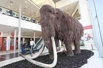 V mosteckém Centralu jsou k vidění zvířata z doby ledové
