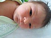 David Jermolajev se narodil 9. března 2018 ve 14.55 hodin mamince Marhitě Jermolajevové z Mostu. Měřil 52 cm a vážil 3,59 kilogramu.