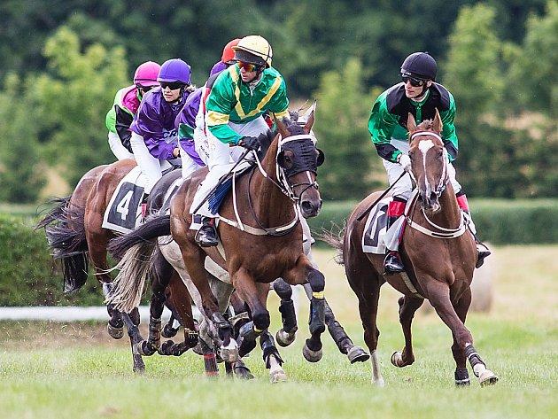 Koně s jezdci při dostizích.