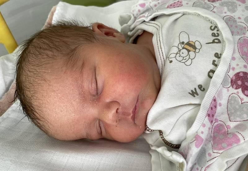 Michaela Džubáková se narodila mamince Michaele Džubákové z Bíliny 9. září ve 14.32 hodin. Měřila 49 cm a vážila 3,74 kilogramu.