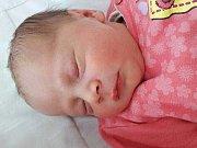 Martina Krylová se narodila 8. srpna 2017 v 10.25 hodin v mostecké nemocnici mamince Martině Krylové z Bíliny. Měřila 48 cm a vážila 2,85 kilogramu.