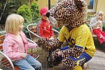 Geparda jako maskota mají i fotbalové Teplice.