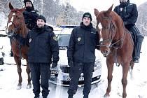 Litvínovští strážníci se dohadují, kdo teď bude jezdit na koních, a kdo ve škodovce.