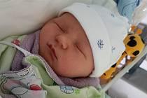 Marek Šlechta se narodil 16. 10. 2020 Tereze Šlechtové. Měřil 52cm a vážil 3,9 kg.