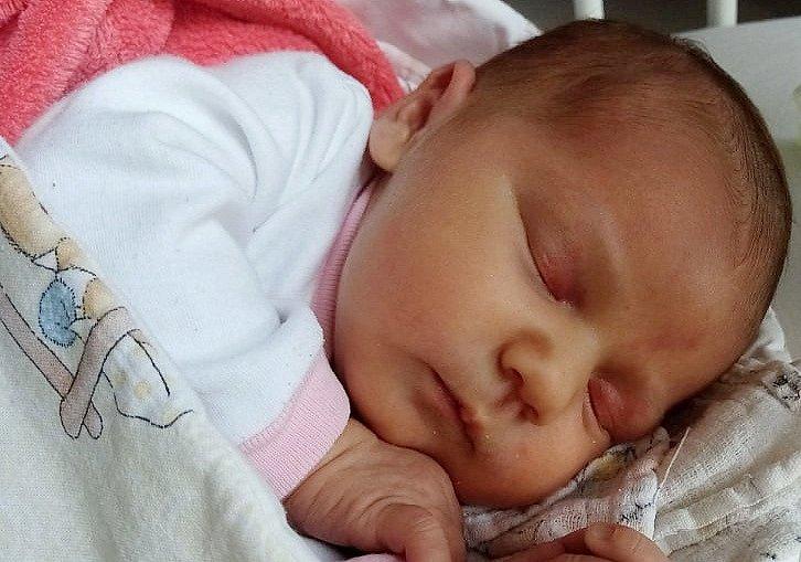 Zora Šimek se narodila 11. března v 7 hodin rodičům Pavlíně a Janu Šimkovým.  Měřila 50 cm a vážila 3,72 kg.