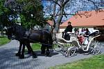 Dětský den sValdštejny se konal v neděli 30. května na Zámku Valdštejnů v Litvínově.