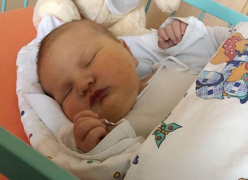 Stelinka Havrilová se narodila 6. září v 1.35 hodin v Ústí nad Labem Sandře Havrilové a Jakubovi Vavrochovi. Měřila 53 cm a vážila 4,59 kg.