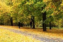 Podzimní park Šibeník v Mostě.