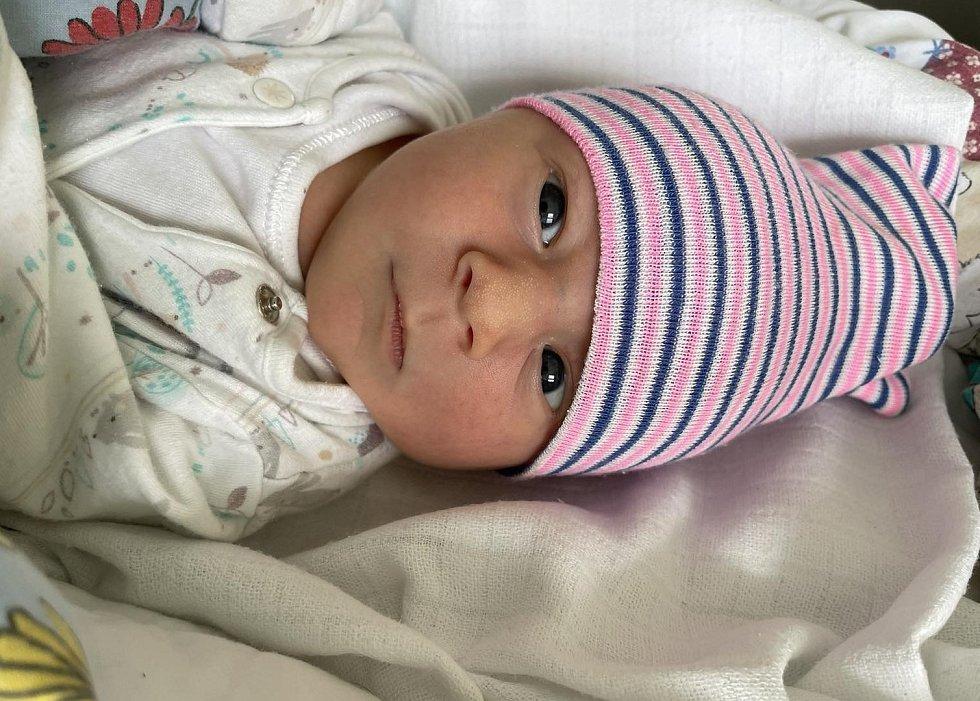 David Pressl se narodil mamince Kristýně Presslové z Litvínova 21. srpna ve 13.36 hodin. Měřil 48 cm a vážil 3,13 kilogramu.