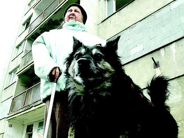 Žena venčí psa na sídlišti Janov před tamním nejhorším blokem F3.