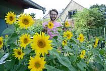 Jan Korba z mosteckého Vtelna prosazuje inovace v městské zeleni, například vytváření komunitních zahrad či pěstování zeleniny na plochých střechách panelových domů.