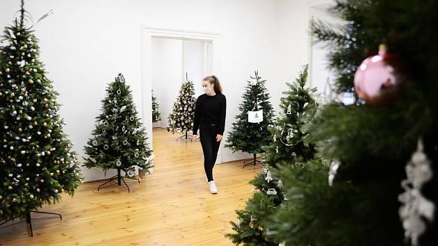 Výstava vánočních stromků v Litvínově.