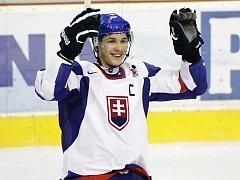 Tomáš Matoušek bude hrát za Litvínov.
