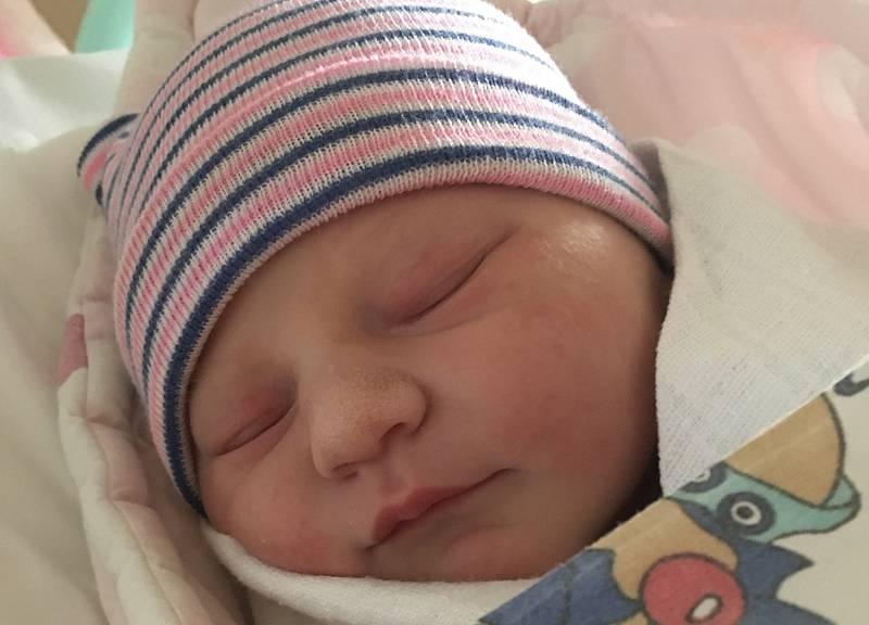 Dorothea Konschill se narodila 20. srpna ve 4.48 hodin rodičům Petře Koudelkové a Vojtěchovi Konschillovi v ústecké porodnici. Měřila 47 cm a vážila 3,26 kg.