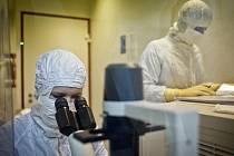 Vývoj nových léků na léčbu nádorových a autoimunitních onemocnění.