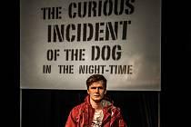 Ondřej Dvořák v Podivném případu se psem v Městském divadle v Mostě.