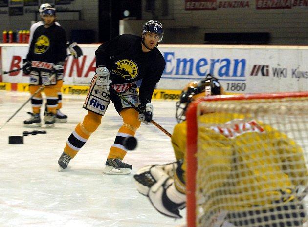 Litvínovští hokejisté během přestávky poctivě trénovali, aby navázali na výborné výkony.