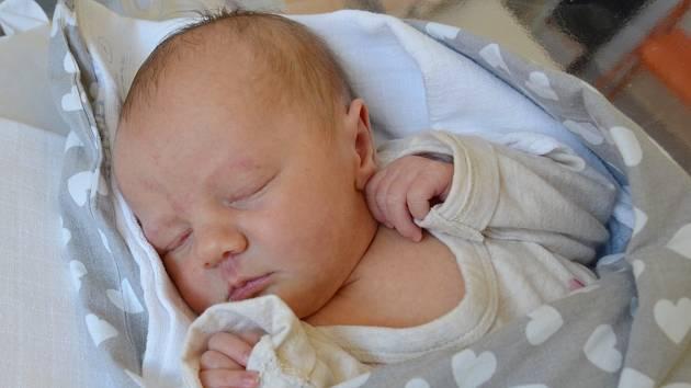 Amálie Voronin se narodila 26. března ve 14.38 hodin rodičům Renátě a Leošovi Voroninovým. Měřila 52 cm a 3,50 kg.