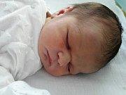 Jan Brhel se narodil 11. listopadu 2017 v 9.15 hodin mamince Nikole Tokarové z Mostu. Měřil 50 cm a vážil 3,29 kilogramu.