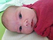 Rozálie Jasmína Fecková se narodila 20. února 2018 v 19.34 hodin mamince Kláře Novákové z Mostu. Měřila 53 cm a vážila 3,93 kilogramu.
