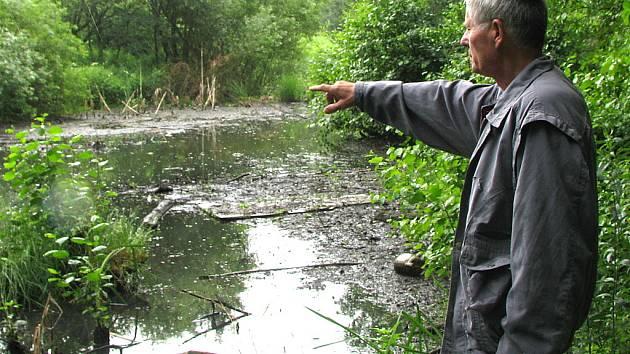 Z rybníku se stává kaliště.
