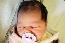 Viktorie Pašková se narodila Markétě Paškové 23.června v 10,10 hodin. Měřila 51 cm, vážila 3,50 kg