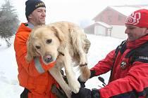 Záchranáři kynologové HZS nacvičují záchranu osob ze sněhu na Klínech