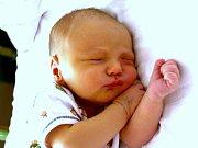 Mamince Lucii Mikulcové se v mostecké nemocnici narodil 25. července ve 14.28 hodin syn Aleš Mikulec. Měřil 53 centimetrů a vážil 3,65 kilogramu.