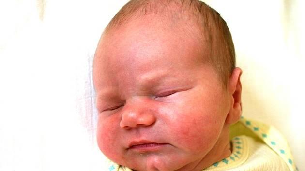 Mamince Kamile Pokorné se v mostecké nemocnici narodil 27. července ve 21.40 hodin syn Dominik Walter. Měřil 54 centimetrů a vážil 3,96 kilogramu.
