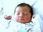 Mamince Lucii Břendové z Litvínova se 29. července ve 14.40 hodin narodila dcera Tereza Břendová. Měřila 47 centimetrů a vážila 3,07 kilogramu.