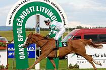 Z vítězství se nakonec radovala jedna z favoritek RABIIT ZAMINDAR s žokejem Dušanem Andresem v sedle.